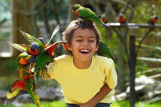 Drusillas Zoo Park tickets vouchers