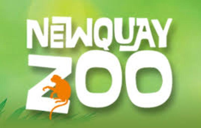 newquay zoo coupons